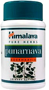 Punarnava herb supports the kidneys and urinary system. Helps treat ascites and edema
