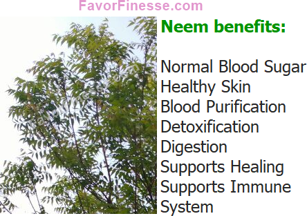 Neem health benefits include normal blood sugar, healthy skin, blood purification, detoxification, digestion, supports immune system, supports healing