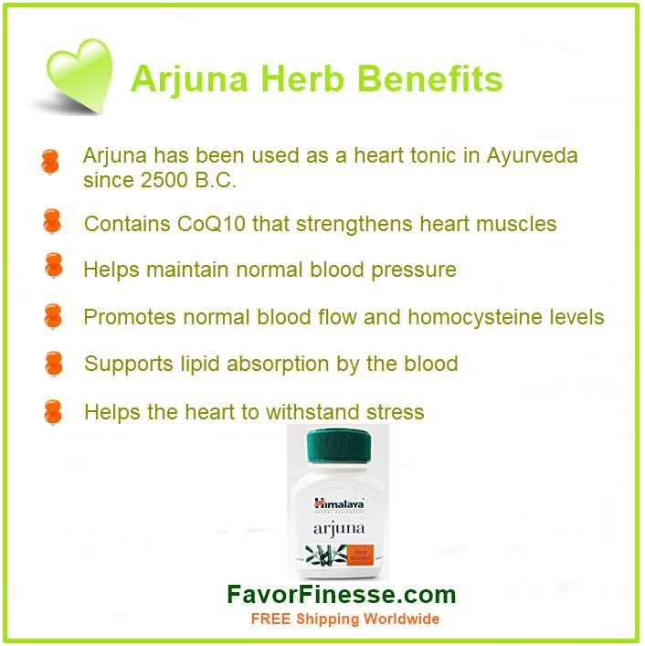 Arjuna herb benefits infographic