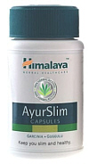 Himalaya Herbals Ayurslim helps to burn fat