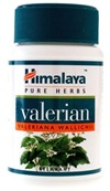 Valerian helps to relax the mind and muscles and promotes sound sleep