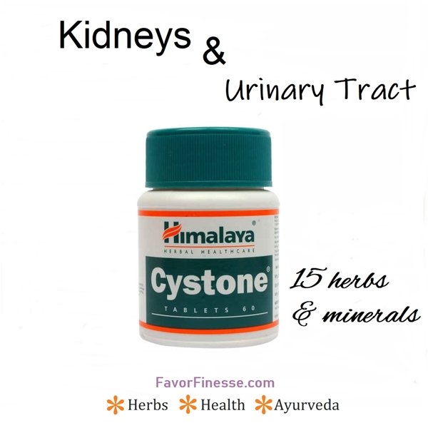 Cystone for kidneys and urinary tract health