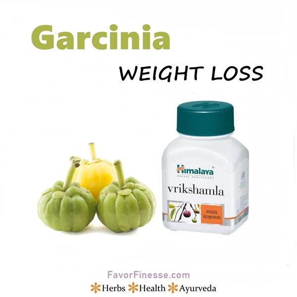 Garcinia weight loss herb